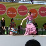スペイン アンダルシア地方の民族音楽 「フラメンコ」は、唄、ギター、踊り の絶妙なハーモニーは、パッションそのものです。 区民祭りや商店街のお祭り、各種イベントや記念祭等には情熱がほとばしるフラメンコが喜ばれます。